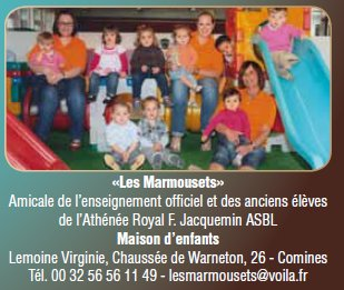 marmousets